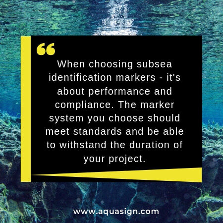 quote from blog, white text on black background with underwater sea image in background